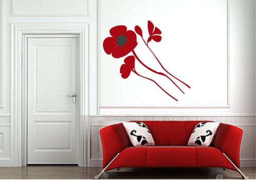 Poze Maci (sticker decorativ)