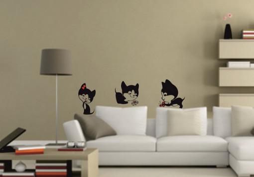 Poze Pisici jucause