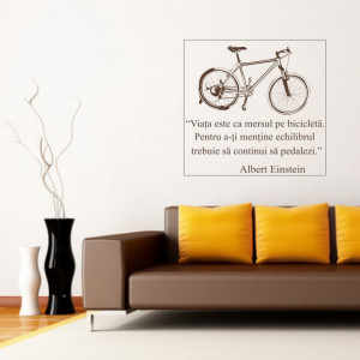 Bicicleta in echilibru