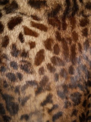 Haina din blana de leopard anii '60