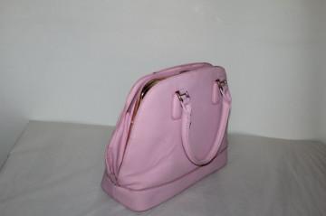 Poseta roz repro anii '60
