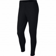 Pantaloni Nike Dri-FIT Academy 21 pentru barbati