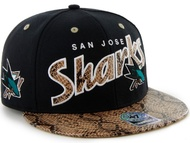 Sapca '47 San Jose Sharks