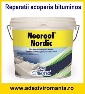 Reparatii hidroizolatie acoperis bituminos TopWork-Neoroof Nordic 4