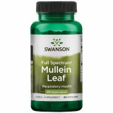 Mullein Leaf - Lumanarica 500 mg 60 capsule Swanson -