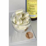 Digestitol with enzymes & bioperine ~ Enzime Digestive cu Bioperina 60 capsule Swanson