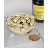 Optimum Potency Serrazimes® - Enzima viermelui de matase 80,000 UI 60 veggie capsules Swanson