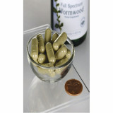 Wormwood - Artemisia Annua - Pelin Dulce - Pelinita 425 mg 90 capsule Swanson
