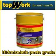 Hidroizolare Terasa peste gresie Sikalastic 490T 5 kg PROMO