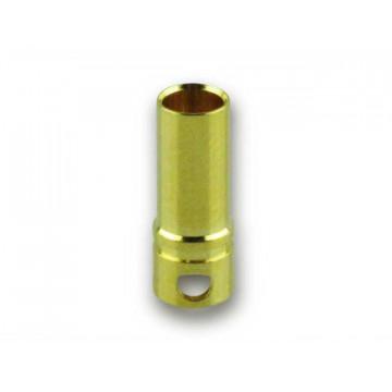 Conectori Bullet 3.5mm auriti YUKI MODEL , mama