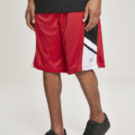 Basketball Mesh Shorts