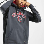 Ecko Unltd. / Hoodie North Redondo in grey