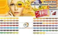 Tencuiala decorativa BAUMIT StyleTop 25Kg