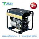 Generator curent monofazic 9.5 kVA Energy 10000 MVE, motor B&S Vanguard, benzina