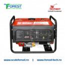 Generator curent monofazic 3.0kW Rotakt ROGE3000, benzina