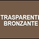 Spray email lucios SMALTO acrilic profesional TRANSPARENT MARONIU RAL8025 - 400ml