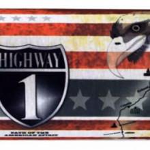 Esarfa tub highway steagul americii