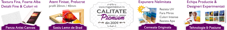 Calitate Premium Tablouri Canvas
