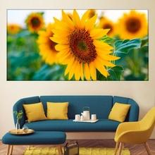 Tablou Floarea Soarelui - Vibratii Pozitive asb26