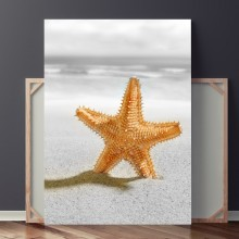 Tablou Stea de Mare pe Nisip OPO441