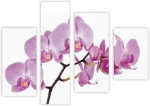 Multicanvas orhidee 4 piese