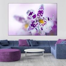 Tablou Orhidee Mov ORST25