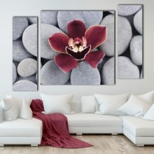 Multicanvas Set 3 Tablouri Orhidee cu Pietre Spa ORST116