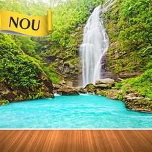 Fototapet Khe Kem Parc National Vietnam mag1