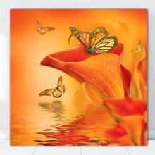 Tablou Canvas Fluturi cu Cale Portocalii FCLS4
