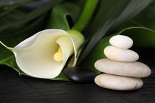 Tablou floare cu pietre spa 01