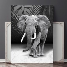 Tablou Canvas Elefant CGA27