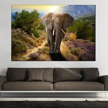Tablou Canvas Elefant in Savana la Apus