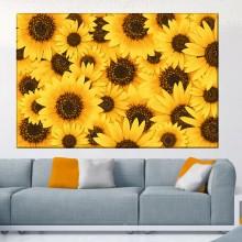 Tablou Canvas Floarea Soarelui ASB33