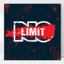 Tablou Canvas Motivational No Limit MTS16