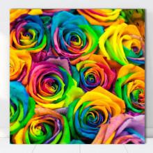 Tablou Canvas Trandafiri Multicolori ROS7