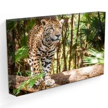 Tablou Jaguar st155