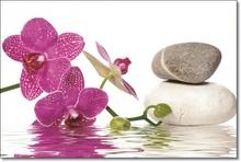 Tablou Orhidee cu Pietre Spa bmor20
