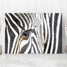 Tablou Prim Plan Zebra anz25