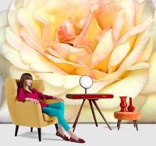 Fototapet Trandafir galben rose frose2f