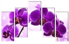 Multicanvas Orhidee Fresh Look