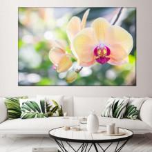 Tablou Canvas Orhidee Galbena ORST125