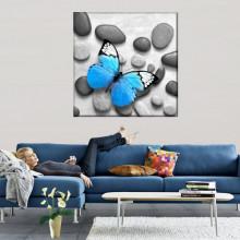 Tablou Canvas Fluture Albastru pe Pietre Spa BDS30