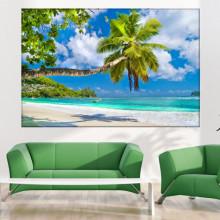 Tablou Canvas Palmier la Ocean PMO131