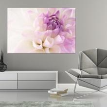 Tablou Crizantema Alb-Mov