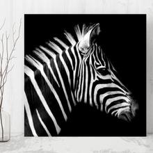 Tablou Zebra din profil anz27