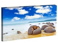 Tablou bolovani pe plaja Moeraki Noua Zeelanda st1038