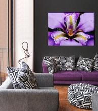 Tablou canvas iris regal