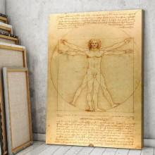 Tablou Leonardo da Vinci Omul Vitruvian DAV1