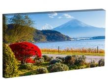 Tablou vedere spre muntele Fuji din Japonia st1538