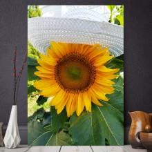 Tablou Floarea Soarelui cu Palarie AMP1